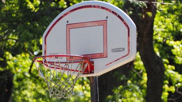 un petit panier de basket